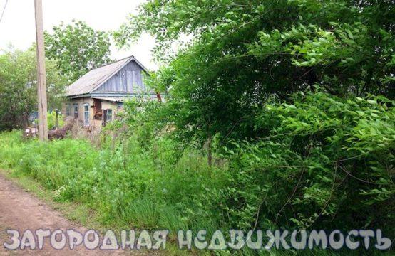 Николаевка №262