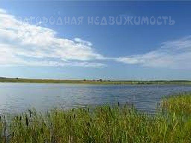 Приамурский №98